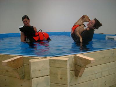Schwimmen beim Gangwerk